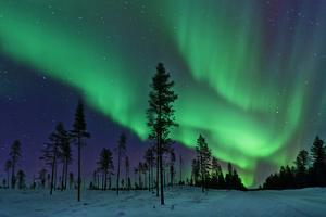 Aurora Borealis Northern Lights Sweden by Dave Moorhouse