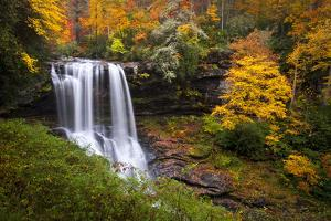 Dry Falls Autumn Waterfalls Highlands Nc Forest Fall Foliage by daveallenphoto