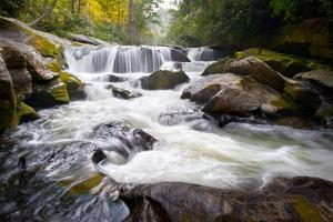 Wild Chattooga River Headwaters Geology Western Nc Flowing Waterfall Nature by daveallenphoto