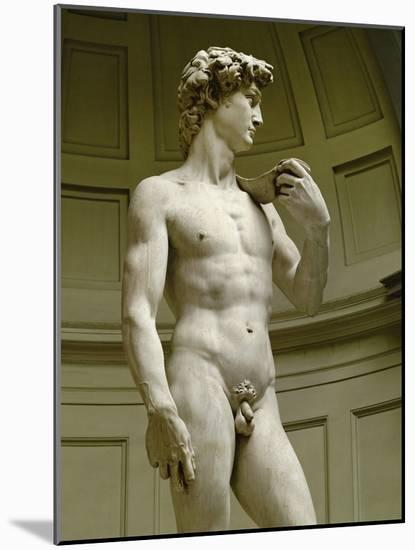 David, 3/4 Profile-Michelangelo Buonarroti-Mounted Premium Giclee Print