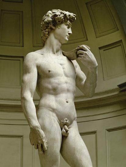 David, 3/4 Profile-Michelangelo Buonarroti-Giclee Print