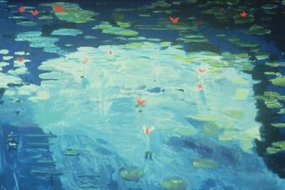 The Waterlily Pond, 1994
