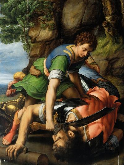 David and Goliath-Michiel Coxie-Giclee Print