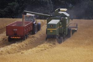 Combine Harvester by David Aubrey