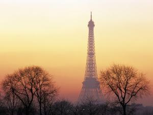 Eiffel Tower, Paris, France by David Barnes