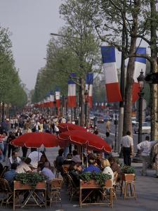 Europe, France, Paris. Champs Elysees, cafe (Medium Format) by David Barnes