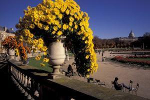 Europe, France, Paris. Jardin de Luxembourg by David Barnes