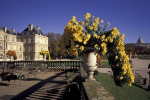 Europe, France, Paris, Luxembourg Garden by David Barnes