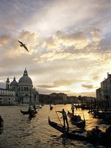Grand Canal, Santa Maria della Salute Church, Gondolas, Venice, Italy by David Barnes