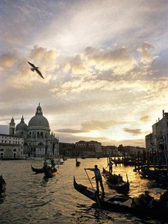 Grand Canal, Santa Maria della Salute Church, Gondolas, Venice, Italy