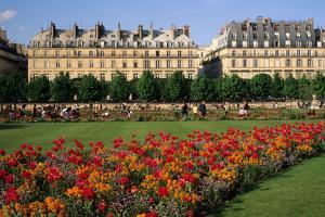 Tuileries Garden, buildings along Rue de Rivoli, Paris, France by David Barnes