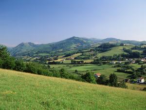 View of Rural Landscape, Pyrenees-Atlantiques, Pays-Basque, France by David Barnes