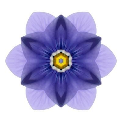 Kaleidoscope Blue Bell