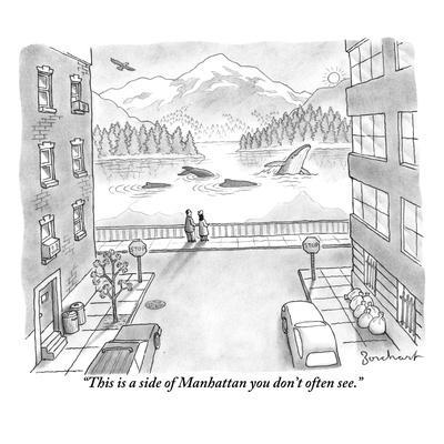 """""""This is a side of Manhattan you don't often see."""" - New Yorker Cartoon"""