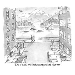 """""""This is a side of Manhattan you don't often see."""" - New Yorker Cartoon by David Borchart"""