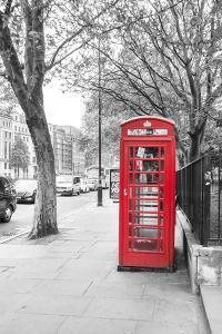 London Red Phone Boxes on Black and White Landscape by David Bostock