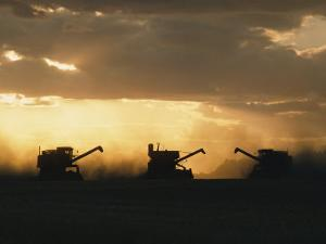 Combines Silhouetted at Dusk by David Boyer