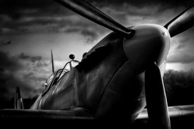 Spitfire by David Bracher