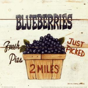 Blueberries Just Picked by David Carter Brown