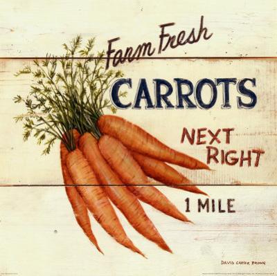 Farm Fresh Carrots by David Carter Brown