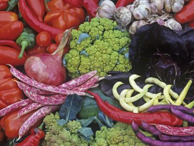 Colorful Italian Heirloom Vegetable and Fruit Harvest, Seed Savers Exchange