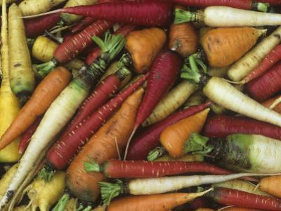 Genetic Variation and Diversity in Carrots, Daucus Carota