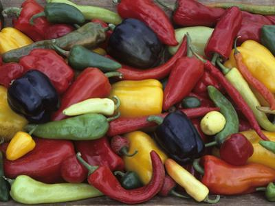 Heirloom Sweet Pepper Harvest