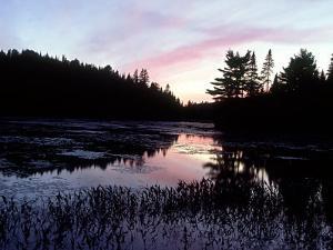 Dusk, Algonquin Provincial Park, Canada by David Cayless