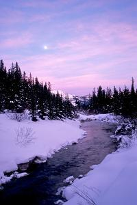 Tributary Coming from Lake Louise by David Cayless