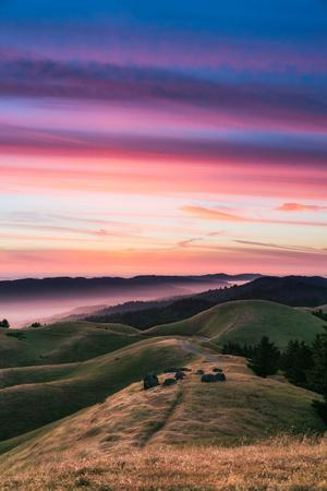 Colorful sunset with pink clouds on Mt. Tam in San Francisco with rolling, golden hills