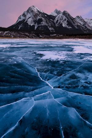 Ice cracks along Abraham Lake in Banff, Canada with purple clouds and scenic mountains by David Chang