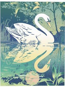 Swan by David Chestnutt