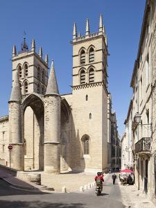 A View of Montpellier Cathedral, Montpellier, Languedoc-Roussillon, France, Europe by David Clapp