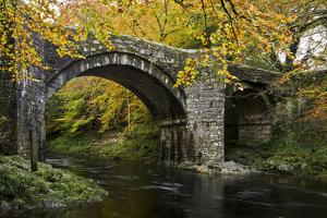 Autumn at Holne Bridge, Dartmoor, England by David Clapp