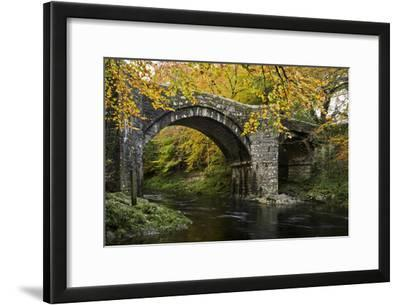 Autumn at Holne Bridge, Dartmoor, England