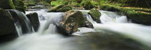 Golitha Falls, Cornwall, Water Flowing over Rocks in the Falls, on the River Fowey by David Clapp