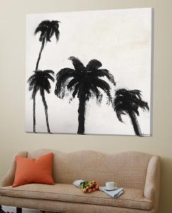 Coconut Grove I by David Dauncey