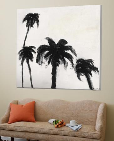Coconut Grove I