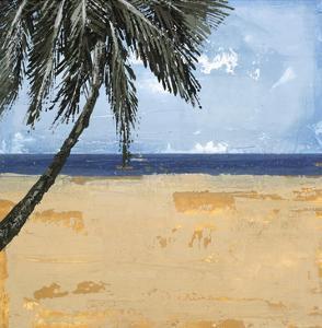 Peaceful Beach 1 by David Dauncey