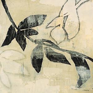 Vine by David Dauncey