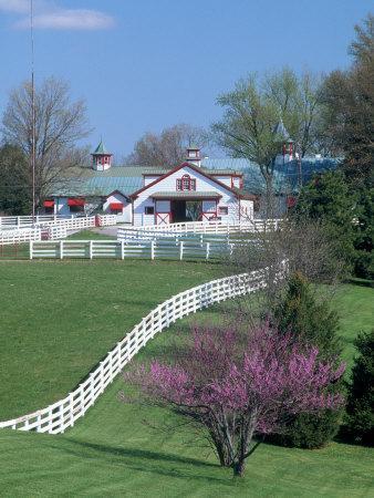 Calumet Horse Farm, Lexington, KY