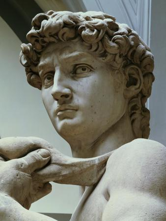 David, Detail of the Head, 1504-Michelangelo Buonarroti-Premium Giclee Print