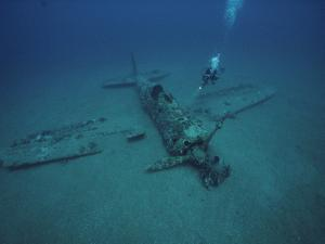 A Diver Explores the Wreckage of a Japanese World War Ii Plane by David Doubilet