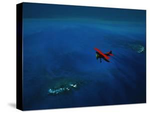 An Airplane Flying over Water by David Doubilet