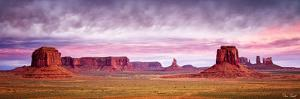 Pink Morning Glory V by David Drost