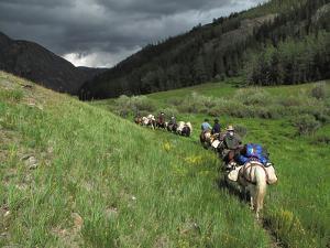 A Train of Horsemen Trek Along Western Mongolia Near Chinese Border by David Edwards