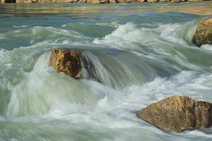 Clear White Water Flows over River Rocks in the Grand Canyon by David Edwards