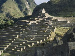 View of Stone Terraces at Machu Picchu by David Evans