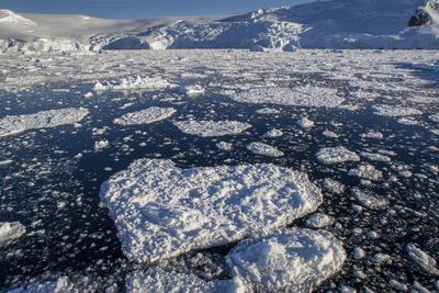 Heart Shaped Ice Near Port Lockroy
