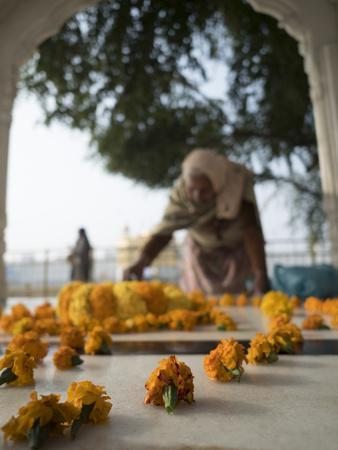 Religious Flower Offerings, at Golden Temple in Amritsar, Punjab, India